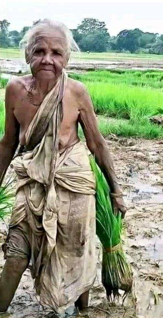 हंगामा क्यों है बरपा, किसान बिल को ज्वलंत क्यों बना रहे हैं?